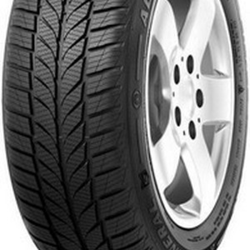 General Tire Altimax A/s 365 195/65 R15 91H M+S
